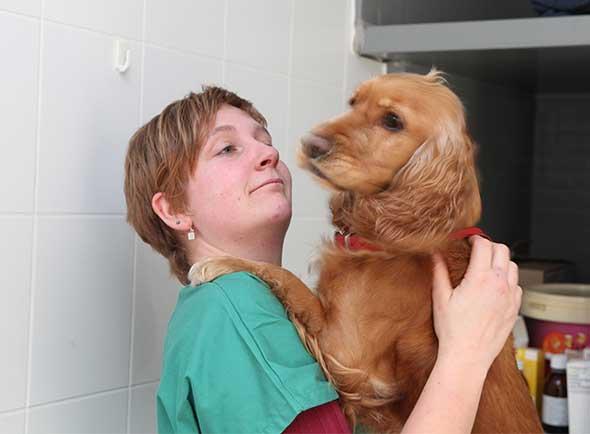 Dierenarts Kirtsen bij het verzorgen van een hond